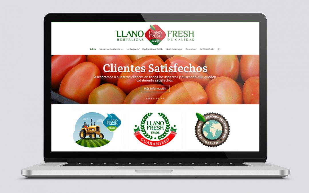 Diseño Web para Llano Fresh