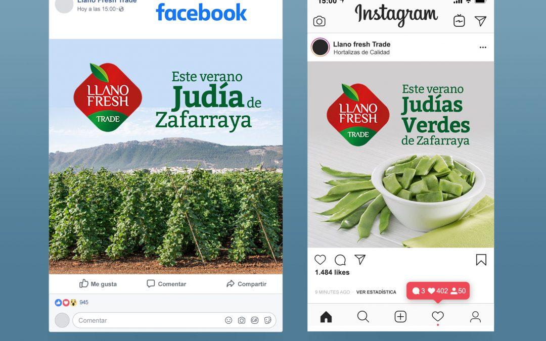 Gestión de redes sociales para Llano Fresh Trade