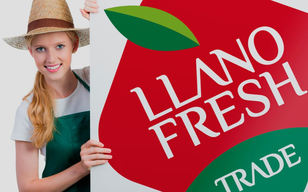 Identidad Corporativa para Llano Fresh Trade